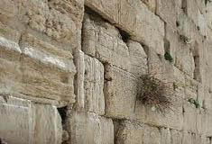 הפרדה מגדרית היתה גם במקדש